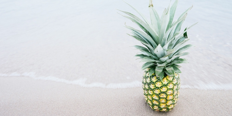 bitcoin pineapple fund