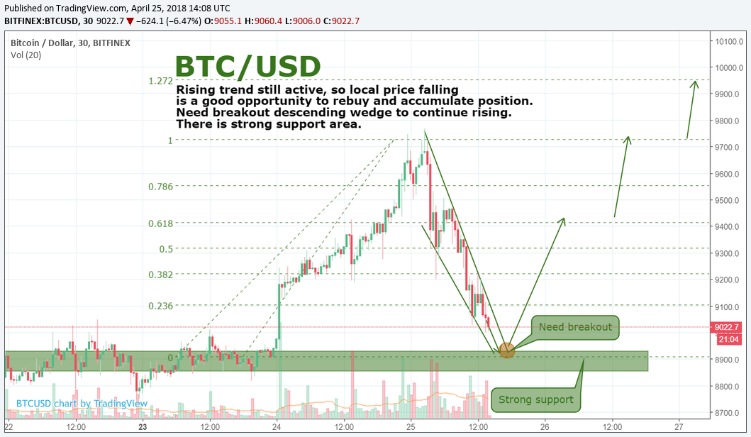 BTC/USD review 25.04 by SNE