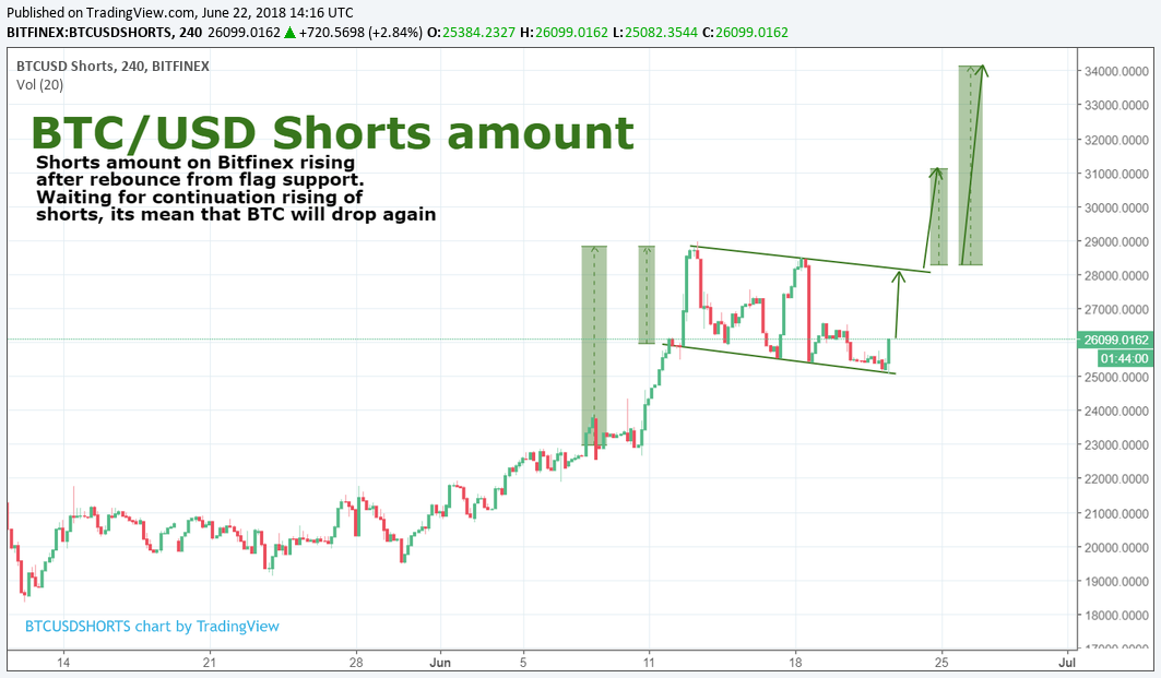BTC/USD Shorts amount review 22.06